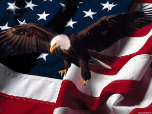 american-flag-bald-eagle-911